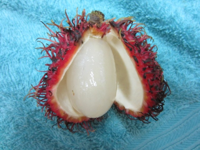 inside rambutan