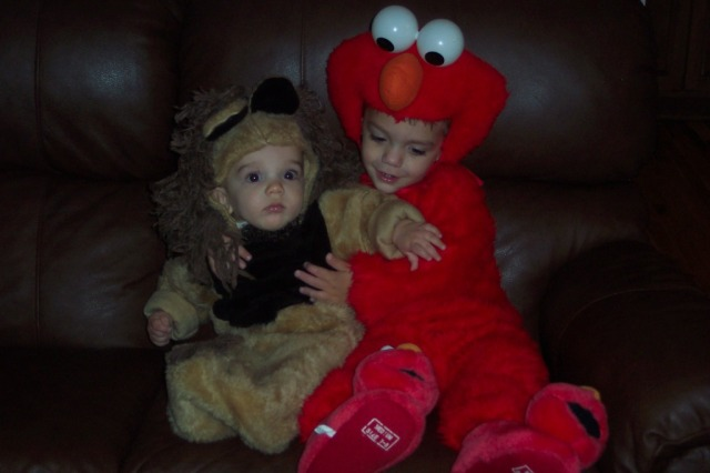 elmo and lion
