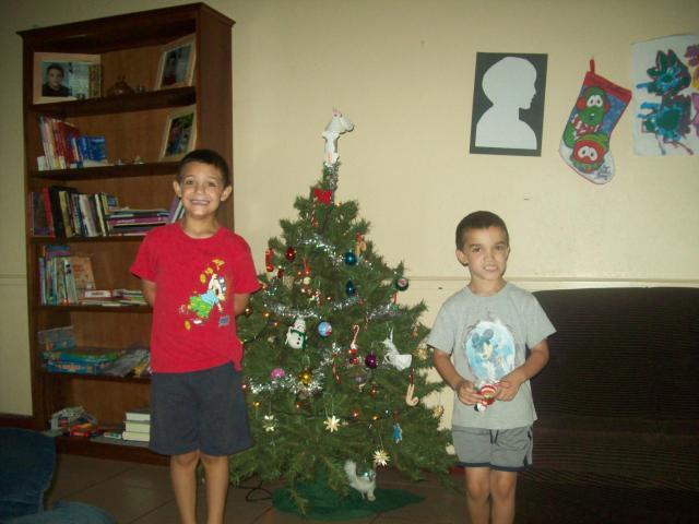 2010 Tree