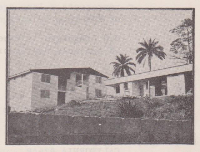 1981 construction picture