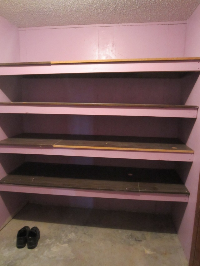 Shelves Before